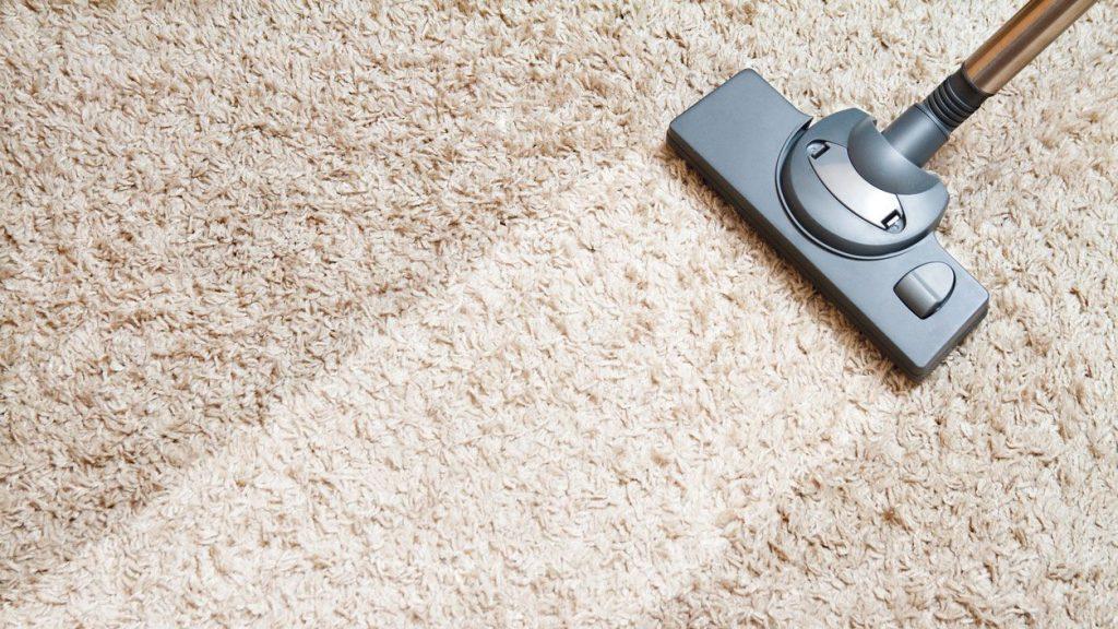 Guía de consejos para la limpieza y el mantenimiento de alfombras – Studio  TG